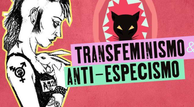 Jantar benefit – Projecções – Conversa sobre as intersecções entre o transfeminismo e o anti-especismo